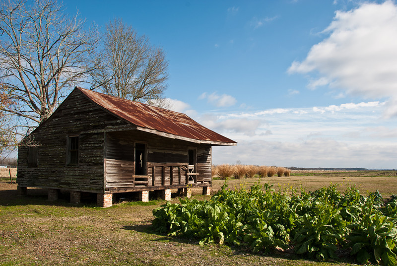 """<span id=""""title"""">Slave Cabin</span> <em>Laura Plantation</em> Pretty awful to see - 2 families would share a cabin like this. No bed, no facilities... There used to be many rows of them closer to the sugar cane fields, away from the main house. They saved two of them and moved them closer for the tourists. The garden out front is something that the slaves would have had access to, since they were only fed breakfast and lunch.  What I found really intriguing is that even after the Civil War, people continued to live in these cabins - up until the 1970s! They got electricity, but never plumbing. Even though slavery was abolished, many former slaves still worked on the plantations because there wasn't a lot of other work, and this was the cheapest housing available."""