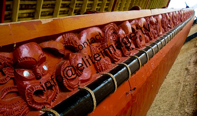 Maori Waka Carving, Waitangi Treaty Grounds, Bay of Islands 2