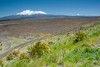 Mount Ruapehu (left) and Mount Ngauruhoe (right) from the Rangipo Desert in the east, North Island, New Zealand, November 2016. [High Desert 2016-11 001 New Zealand]