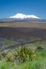 Mount Ruapehu from the Rangipo Desert in the east, North Island, New Zealand, November 2016. [High Desert 2016-11 003 New Zealand]