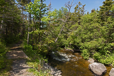 Stream near Rocky Harbour