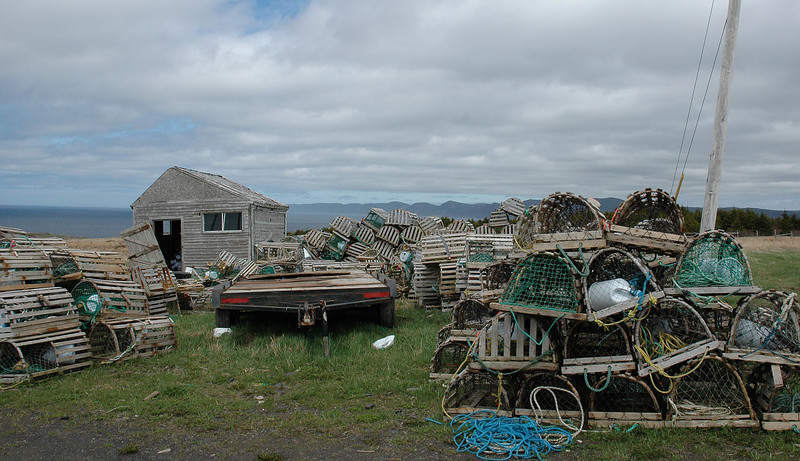 Lobster Pots on Bell Island
