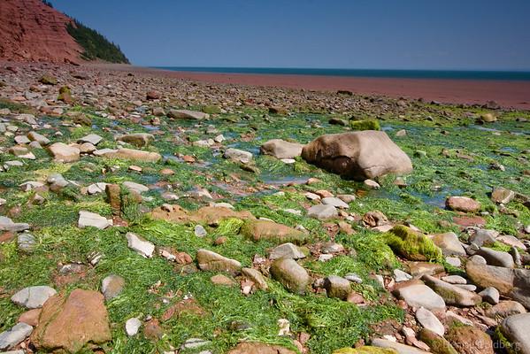 Low tide on the Bay of Fundy, Blomidon Provincial Park, Nova Scotia