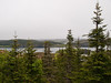 View from the front door of our cabin.