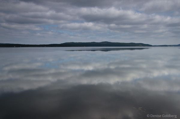 A mirror of reflecting clouds, in Terra Nova National Park, Newfoundland