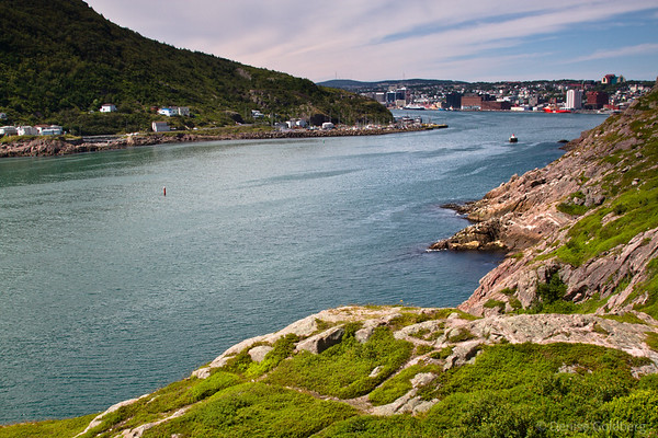 Looking into St. John's from Signal Hill