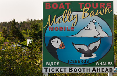 Newfoundland 2014