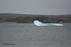Iceberg, Ship Cove, NL.