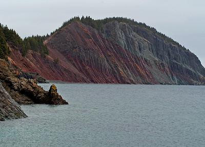 Newfoundland 5001