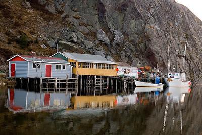 Newfoundland 0009