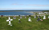 Anglican Church cemetary and fishing harbour, Codroy, NL.