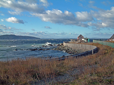 Newfoundland 6196
