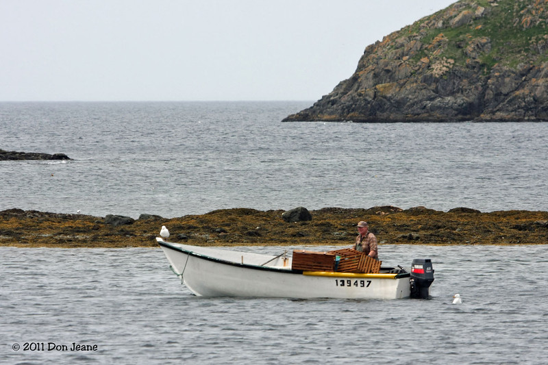 Twillingate, NL. Note the helper on the bow.