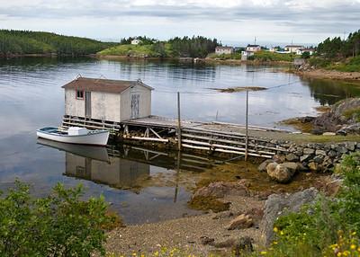 Newfoundland 0158