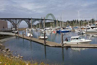 Newport Bay 2010