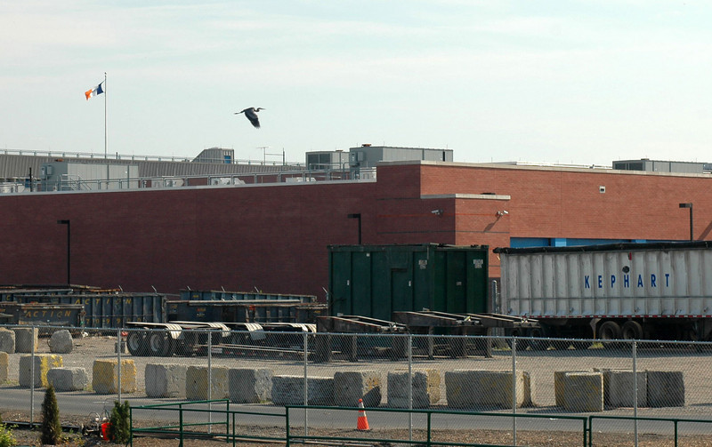 Heron over Newtown.