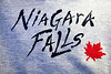 Niagara Falls - 2013 - Pat C/Dan and Pat B/Sal) - July 15th to July 18th)