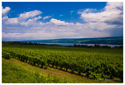 Storms blowing up over Seneca Lake, NY.  This is the heart of the NY wine country.  Great cool season grapes - Riesling, Gewurztraminer...