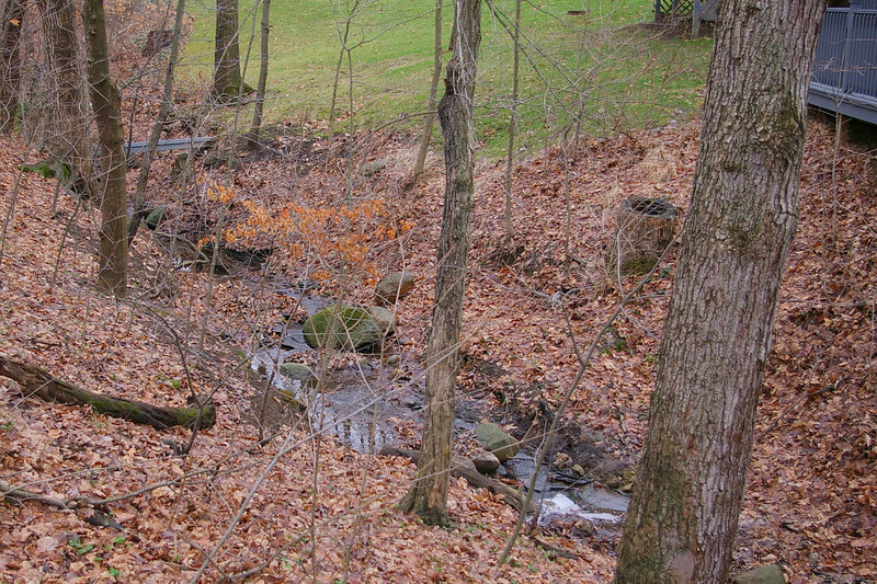 The small creek behind the house