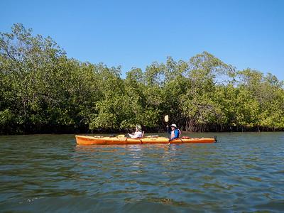 Kayaking in the Mangrove Estuaries.