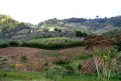Lots of farmland.