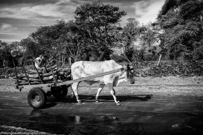 20150313-Nicaragua-810_0737-Edit