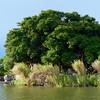 Las Isletas - island