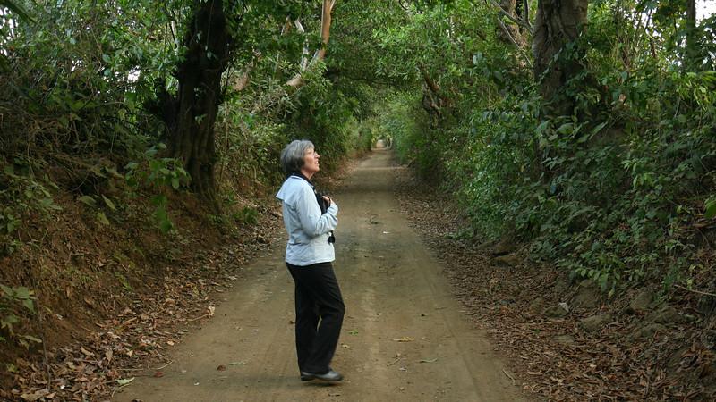 Montibelli - Jackie on the Road to Montibelli