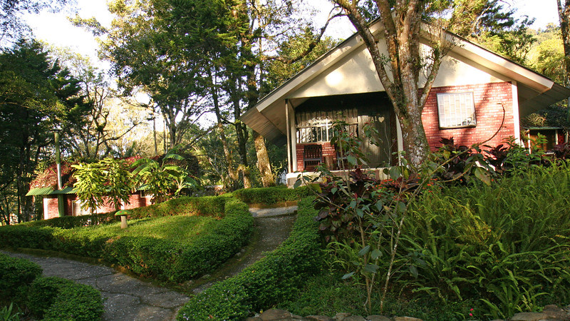Selva Negra - Our bungalow at Selva Negra Mountain Lodge