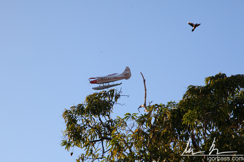 A small plane flying over the central park in Granada.