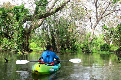 Entering the Rio Istian, a lush and narrow river of tangled vines and floating water lilies that meanders across the isthmus separating the two volcanoes.