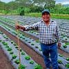 Proud farmer, La Dalia