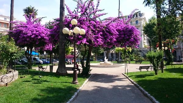 Ein av mange parkar i Nice