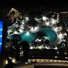 Pools at Westin Diplomat in Hollywood