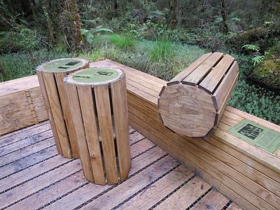 Deze bomen zijn veel gebruikt om kisten te timmeren voor kaasexport