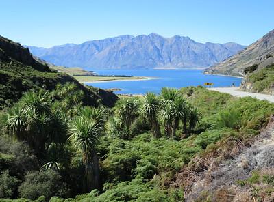 De NZ alpen oversteken