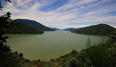 Queen Charlotte Sound, Marlborough Sounds. Zuidereiland, Nieuw-Zeeland.