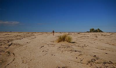 Opoutere Beach, Coromandel Peninsula. Noordereiland, Nieuw-Zeeland.
