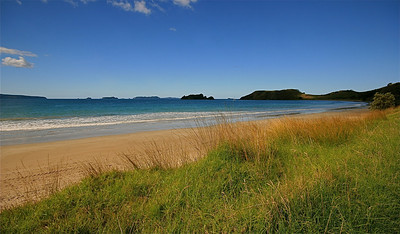 Opito Bay, Coromandel Peninsula. Noordereiland, Nieuw-Zeeland.