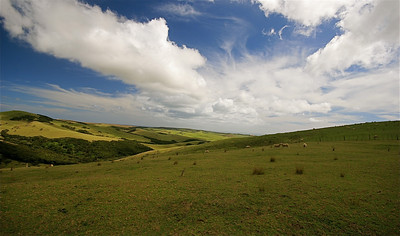 Te Paki, The Far North. Noordereiland, Nieuw-Zeeland.