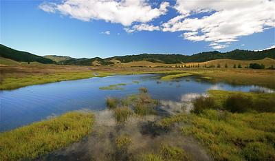Otama Wetlands, Coromandel Peninsula. Noordereiland, Nieuw-Zeeland.