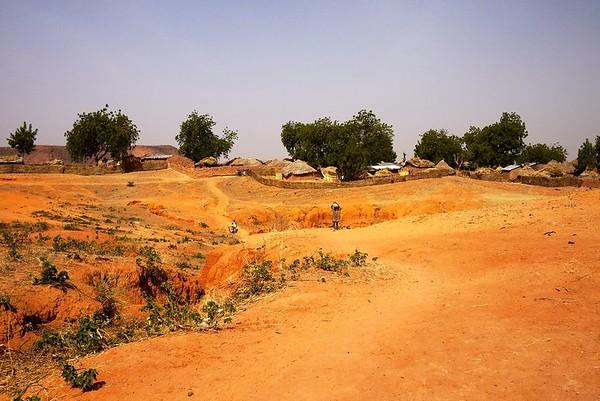 More Zuguru