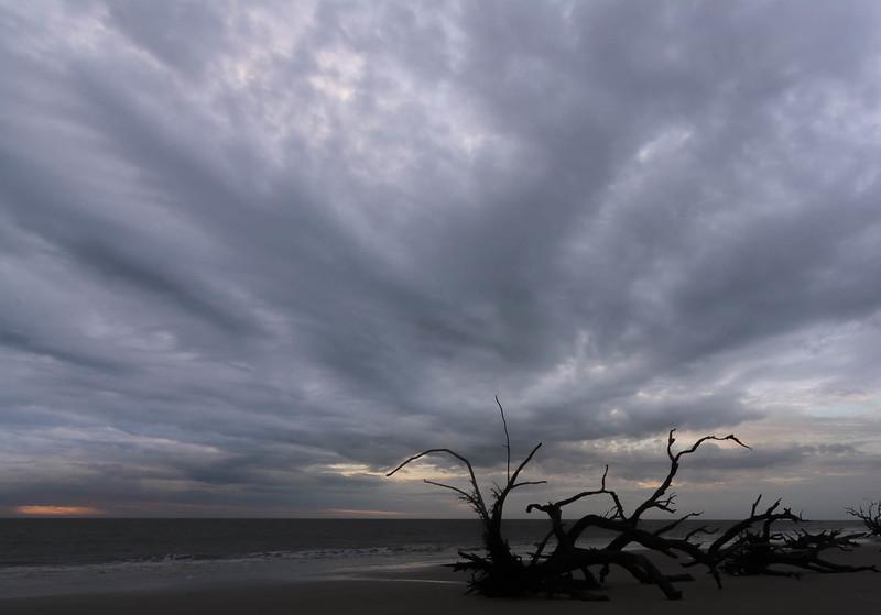 Sunrise Driftwood Beach - Jekyll Island