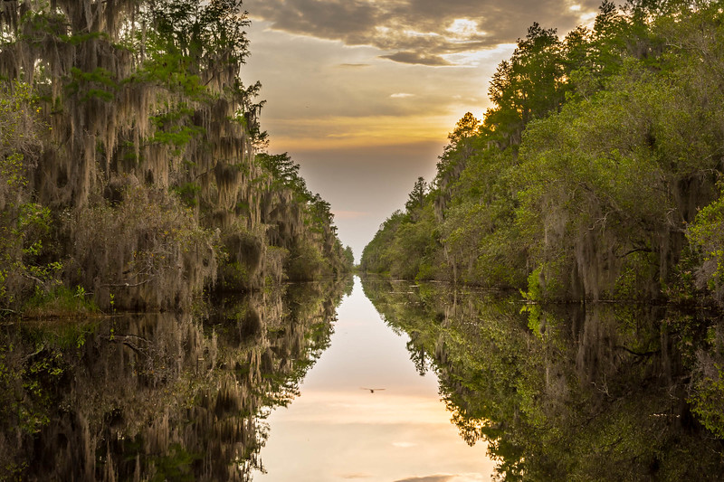 Sunset in Okefenokee