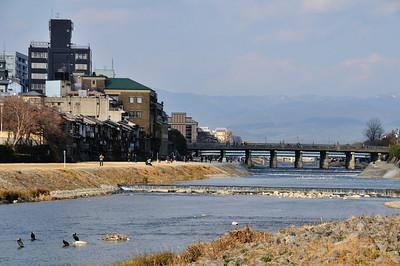 Nishikikoji-Kamo River/Kyoto
