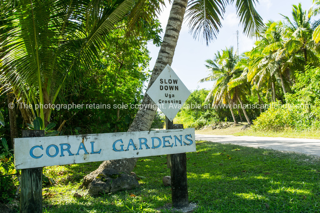 Niue-695
