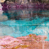 Calm turquoise colored water in pool in limestone  cave on coast of Niue.