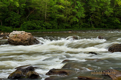 Nolichucky River, July 2011