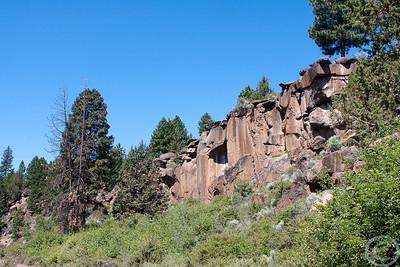 2010 Oregon-6732