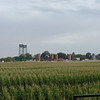 This is a beautiful working farm on the delta below Stockton, CA.  Notice the railroad drawbridge in the distance.